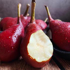 吃软不吃硬|西洋红啤梨 生长于海拔200米以上的灵宝高山 远离城市污染  5斤装包邮