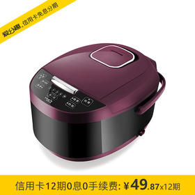 乐扣乐扣(LOCK&LOCK)微电脑电饭煲 容量3.0L EJR337RED