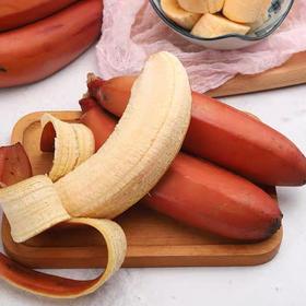 【99%没吃过的】漳州土楼红美人香蕉 红皮黄肉 皮薄肉嫩 口感软糯香甜 原生态的味道~