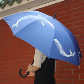 南周原创-鲸鱼长柄雨伞&晴雨两用小伞