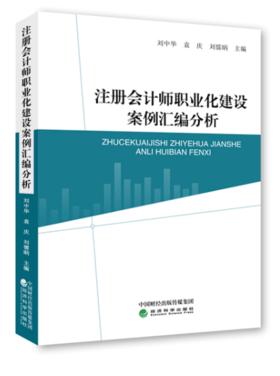 注册会计师职业化建设案例汇编分析