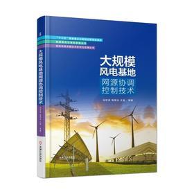 *大规模风电基地网源协调控制技术