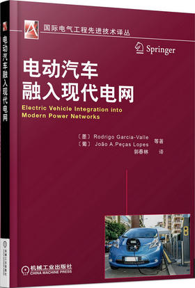 *电动汽车融入现代电网