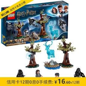乐高 LEGO 哈利波特系列 疾疾护法现身 75945 7月新品 儿童积木拼装玩具 7岁+