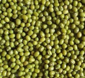 缅甸进口绿豆散称