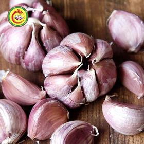 龙南马槽山紫皮大蒜新鲜干蒜多瓣大蒜头3斤装