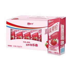 蒙牛真果粒250g36盒(五个口味)