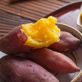 临安天目山小香薯 果肉饱满 入口软糯 回味甘甜 现挖现发 皮薄如纸 小果 中果 5斤装 不使用农药化肥