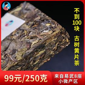 南茗佳人2019年易武古树生茶黄片《琥珀》 250克/砖