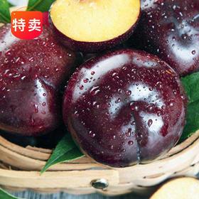 陕西黑布林带箱5斤/10斤 (果帅甜)