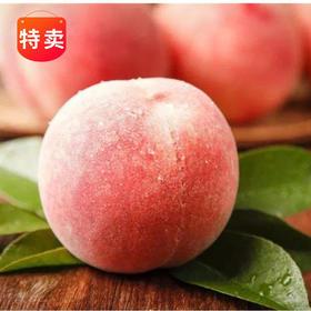 黄河现摘蜜脆桃5斤 (爽果乐)