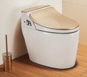 【智能马桶】津上日本智能马桶灌肠通便进口加热全自动无水箱坐便器 金色
