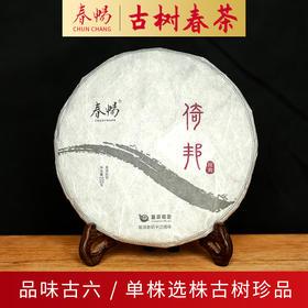 2019普洱茶吧春畅经典系列倚邦包地混采古树春茶普洱茶生茶200克