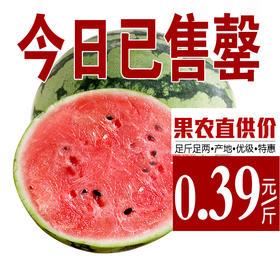 优级开封西瓜 精选单颗10斤 红瓤多汁 新鲜水果-864824
