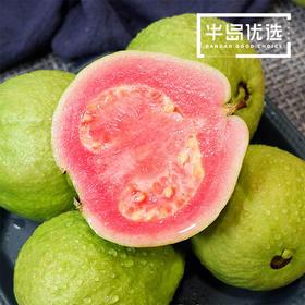 台湾红心芭乐 营养丰富 老少皆宜的番石榴 5斤装包邮