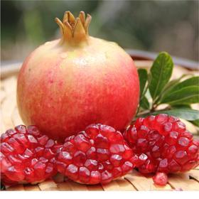 「突尼斯软籽石榴」色泽艳丽,籽粒如红玛瑙,甜美多汁,美容养颜,女神必备!