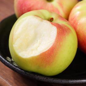 嘎啦苹果 皮薄多汁  现摘现发 清甜爽口 原生态种植 5斤/8.5斤装