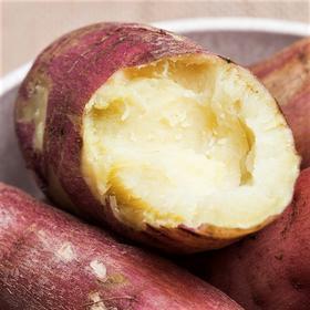 当季上新 | 板栗薯 栗香浓郁 入口绵柔 软糯香甜 红薯5斤装