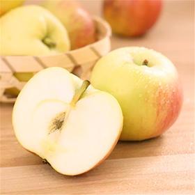 当季上新 | 陕西富平嘎啦苹果 清脆皮薄 味甜微酸 现摘现发