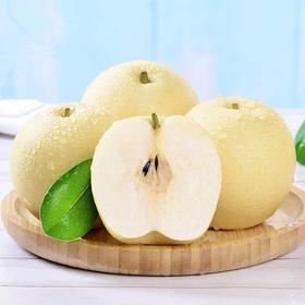河北皇冠梨梨子新鲜当季水果香梨砀山酥梨包邮5斤包邮