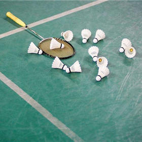 【单身专题】10.22(周二)下班后,约羽毛球!交友运动两不误!