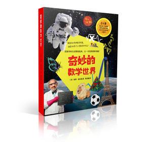 《奇妙的数学世界》(全4册) 赠品:《迷人的数学谜题》益智游戏手册