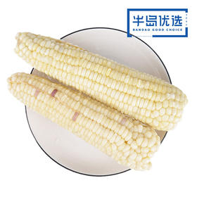 东北白玉米*2串