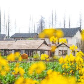 【嘉兴•乌镇】乌村酒店 2天1夜秋季自由行套餐(一价全含)