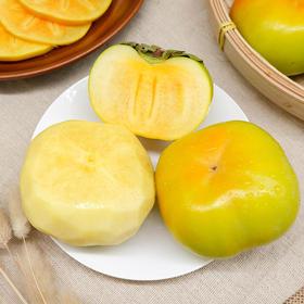 当季新品 | 云南脆甜柿子 香甜可口 汁多味美 果肉鲜美 肉嫩爽口 5斤装