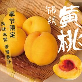 下单后5-8天发货[高山黄桃]风味浓郁 顺丰包邮 4.5斤(8-12个)
