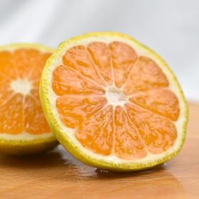 积分兑换 当季新品 | 云南蜜橘 风味浓郁 皮薄多汁 清香诱人 饱满圆润