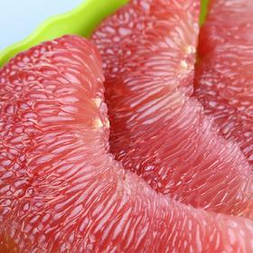 福建漳州红心蜜柚 | 肉质细嫩 水润酸甜 柚香浓郁 约5斤