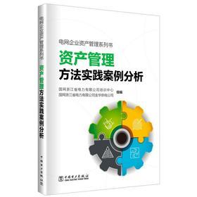 *电网企业资产管理方法实践案例分析