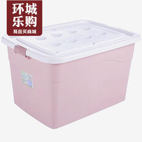 宏宝隆9801整理箱-400010