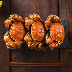 【美味中秋】美味心选中秋大闸蟹礼券8只甄选装  中秋螃蟹礼卡
