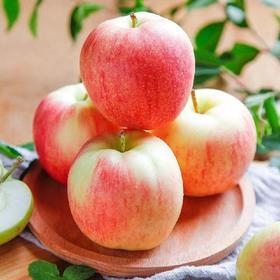 苹果水果新鲜当季带箱10斤批应季脆甜陕西红富士丑萍果嘎啦青整箱