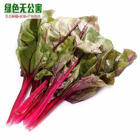 紫叶甜菜 精选200g 生态种植 无公害 新鲜蔬菜-835171
