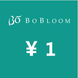BoBloom消费补额