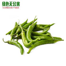 杭椒 3.3元/斤 生态种植 无公害 杭椒 时令蔬菜 辣椒 新鲜蔬菜-835204