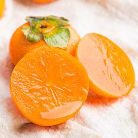 软柿子 | 色泽彤红 口感绵软 饱满多汁 甜而不腻 4斤装