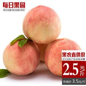 优级奉化水蜜桃 精选2斤装 新鲜水果现摘桃子孕妇多汁当季蜜桃-864836