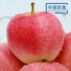 【买2份立减10元】陕西 • 嘎啦苹果皮薄多汁  清脆面爽  淡酸浓甜  5斤(12-16个)