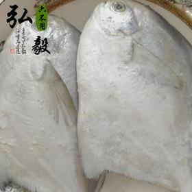 【弘毅六不用生态农场】深海鲳鱼,深海 4条/份 1.3斤左右 顺丰