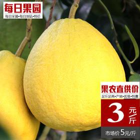 梅州沙田柚  精选1.8kg 新鲜白肉沙地柚子特产-835048