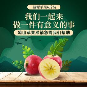 【预售】凉山盐源苹果(9月13日前后成熟期开始按下单顺序发货)