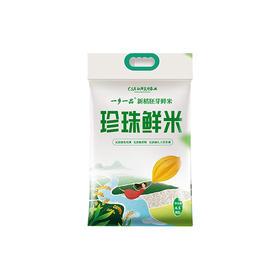 带胚芽的小町珍珠鲜米4.5KG