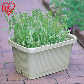 阳台盆景蔬菜大花盆 种菜塑料深型花盆
