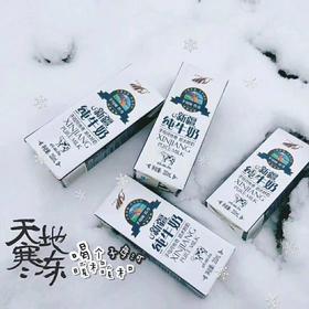 子母河纯牛奶 新疆纯牛奶  优质牧场纯牛奶