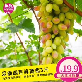 【正圆葡萄】19.9元抢购原价30元巨峰葡萄3斤,最后一次特价,这次过了就要等明年了