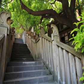 【单身专题】漫步重庆山城步道,遇见那个懂你的人。